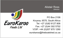 EuroKaroo Business Card Design